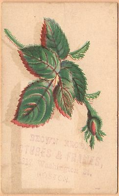 Small Victorian Trade Card-Brown Bros Pictures & Frames-Boston, (Boston Trade Frames)