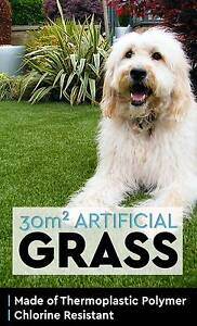 30 SQM Synthetic Artificial Grass Olive Plant Lawn Turf Plastic Perth Perth City Area Preview