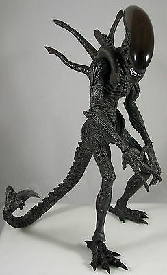 AVP Alien Warrior 1/6 Scale Collectible Figure Hot Toys Sideshow Collectibles