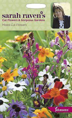 Tithonia Torchlight Sarah Raven/'s Flowers 100 Seeds Johnsons