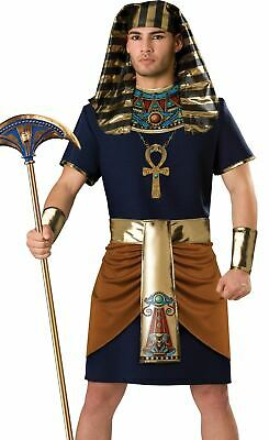 Egyptian Pharoah Costume (Pharoah Egyptian King Tut Adult Mens)