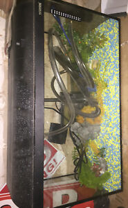 Fish Tank(Aquarium) For Sale