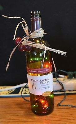 Chokecherry Medley Lighted Wine Bottle  B1
