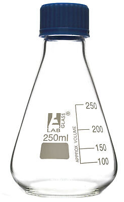 250ml Glass Erlenmeyer Flask With Ptfe Lined Screw Cap Borosilicate 3.3 Glass