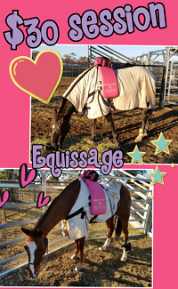 Equissage treatments