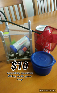 Siamese fighting fish tank and accessories Seville Grove Armadale Area Preview