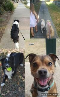 Danielle's Dog Walking & Pet Care