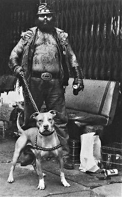 Hells Angels Big Vinny Girolamo & His Pit Slight Dark Grainey 8.5x11 Great Photo