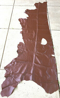 Real Leather Cowhide - Giant Calf Whiskey - 12+ Sq ft - Upholstery/Crafts G449