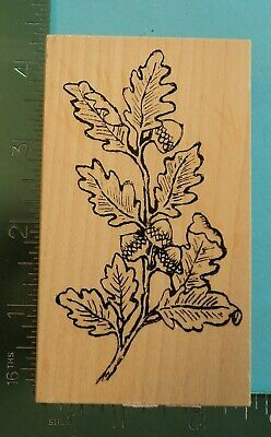OAK TREE BRANCH  LEAVES  ACORN Rubber Stamp by Great Impressions