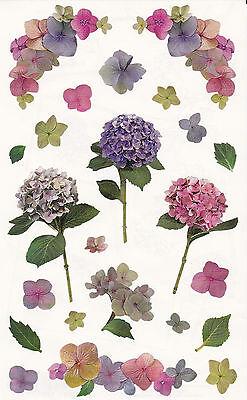 Mrs. Grossman's Giant Stickers - Photo Hydrangea Stems - Pink Flowers - 2 Strips - Photo Stickers