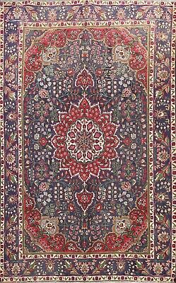 Rugs Carpets Horse