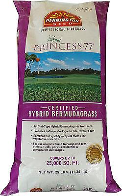 Princess 77 Bermuda Grass Seed 1/4 Lb. Sample Packet