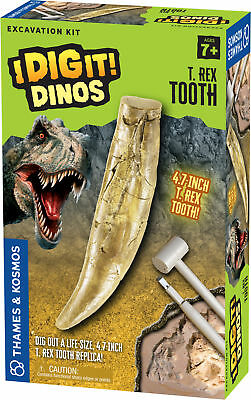 I Dig It! Dinos - T. Rex Tooth Excavation - Dino Excavation Kit