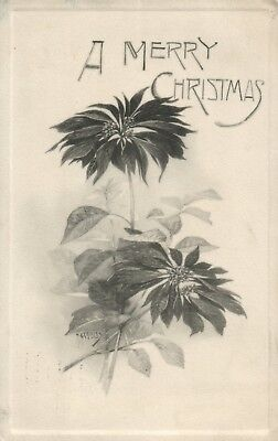 Black And White Christmas (Black and White Artistic Poinsettia Christmas vintage)