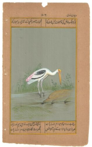 Heron+Bird+Miniature+Painting+Watercolor+Old+Paper+Wall+Decorative+Art+Painting
