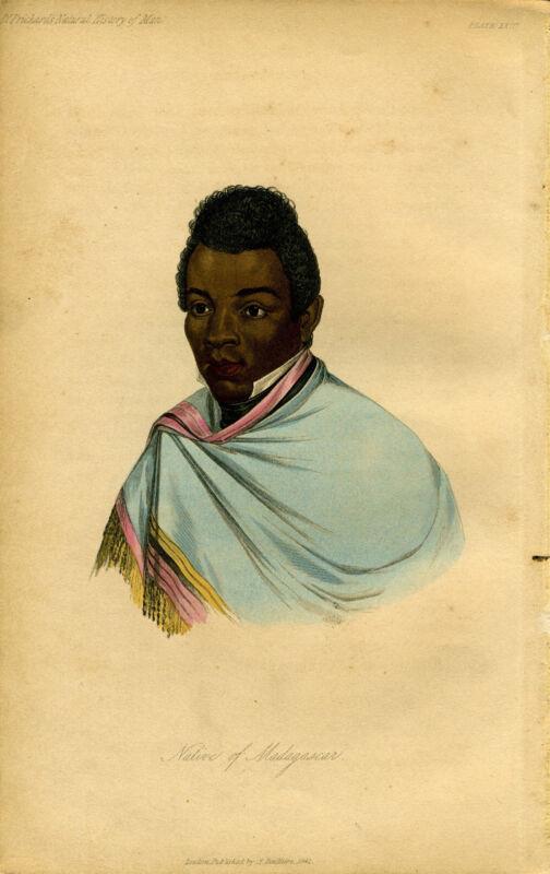 "1842 Genuine Antique Portrait ""Native of Madagascar"". Prichard Natural Hist. Man"