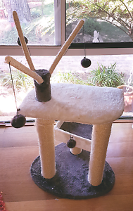 Kitten and Cat play station and bed platforms Duncraig Joondalup Area Preview