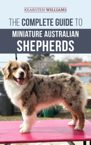 The Complete Guide to Miniature Australian Shepherds - Paperback 2019