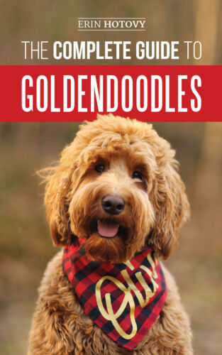 The Complete Guide to Goldendoodles: - Dog Training Guide Book - Paperback 2019