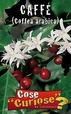COFFEA ARABICA confezione/pack 5 semi seeds Pianta del caffè Arabica coffee