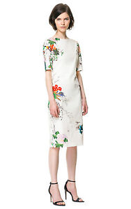 BNWT ZARA white oriental print shift wiggle dress floral butterfly RARE  M 10-12