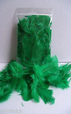 Глинистые формы EMERALD GREEN CRAFT FEATHERS