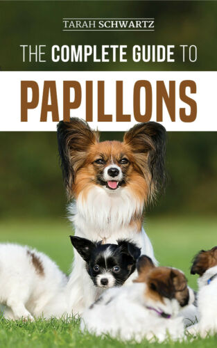 The Complete Guide to Papillons: - Dog Training Guide Book - Paperback 2019