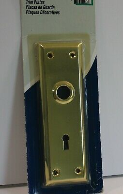 Mortise Trim Plate Polished Bright Brass 7