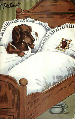 Fantasy Dog Bed - Fantasy Anthropomorphism Dachshund Dog Widow Crying in Bed c1910 Postcard