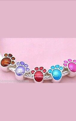 DOG pet paw print charm bead fit silver charm bracelet top seller wgift bag USA