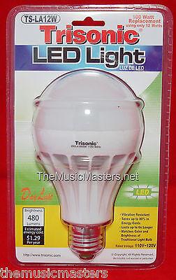 Led Light Bulb 12W Lamp   100W Oversized Replacement 480 Lumens White Daylight