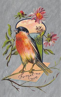 Red Breasted Bird on Branch~Note~Meadow Keyhole~Daisies~Silver Back~Germany