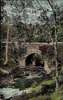 Scarborough Yorkshire England ~1910 Bridge Brücke Landschaft Landscape Natur