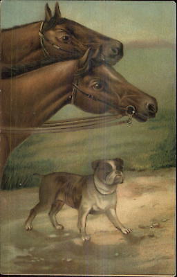 Used, Race Horses & Bulldog Bull Dog or c1910 Embossed Postcard for sale  Shipping to Canada