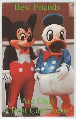Mickey Mouse and Donald Duck in Classic Costumes Best Friends Chrome Postcard (Best Mickey Mouse Costume)