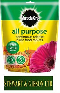 MIRACLE GRO Controlled Release All Purpose Plant Food Tablets Pack of 25 Tabs