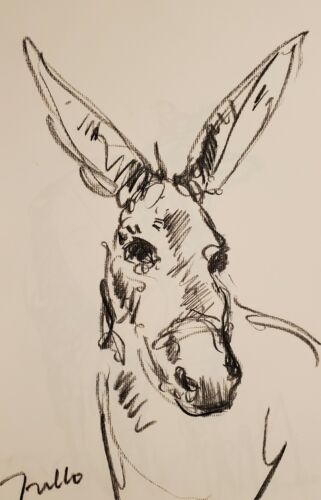 JOSE TRUJILLO - Original Charcoal Paper Sketch Drawing 11X17 DONKEY ANIMAL