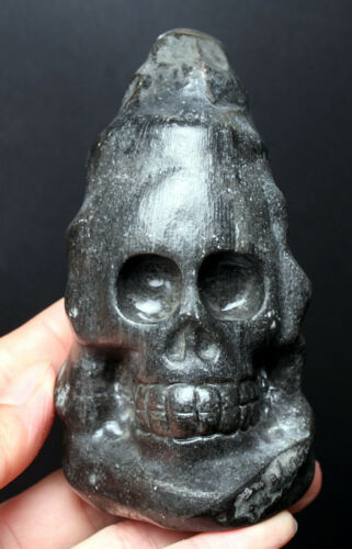 410g  NATURAL Fossil Rugose Horn Coral from Africa SKULL/SKELETON CARVING