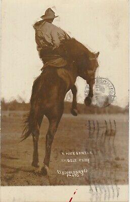 Cowboy Riding Bucking Horse -- RPPC -- Nice Gentle Saddle Pony - Doubleday Photo