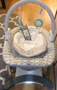 Fisher Price Lightly Used Infant Rocker/Soother