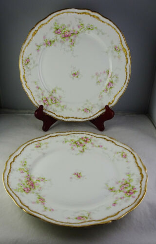2 Haviland Limoges Porcelain Double Gold with Roses Dinner Plates Patent Applied
