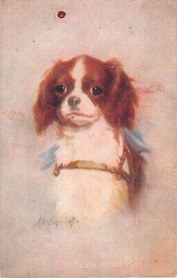 Adorable Cavalier King Charles Spaniel-Old Postcard-Artist Kenyon-5560 Princess