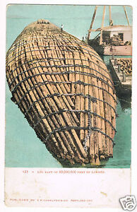 Log Raft Of 80,000,000 Feet Off Lumber, Oregon Postcard ca. 1906
