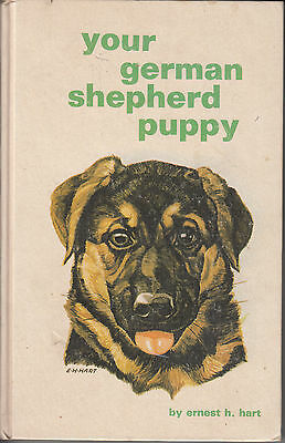 YOUR GERMAN SHEPHERD PUPPY by Ernest H. Hart. A very nice hardcover dog book.