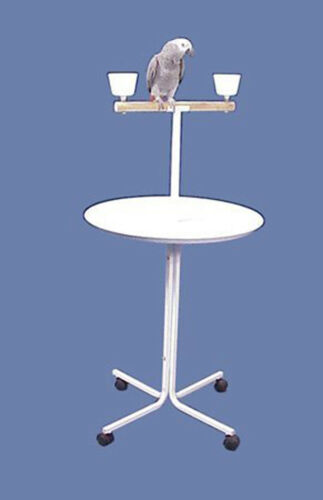 """47"""" Large T-PlayStand  Metal Base Parrot Amazon African Grey Macaw Cockatoo"""