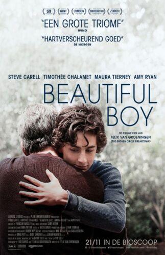 "Beautiful Boy movie poster (b) - 11"" x 17"" - Timothee Chalamet - (2018)"