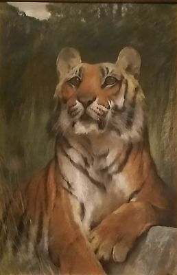 Vintage TIGER Wildlife Portrait, 1920s, Signed ARTHUR WARDLE, Pastel Painting