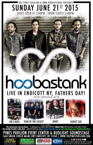 HOOBASTANK/THE X KIDS/YEAR OF THE LOCUST/DIVOT 2015 ENDICOTT CONCERT TOUR POSTER
