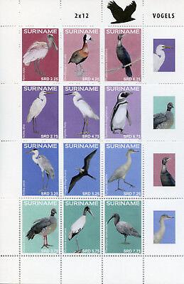 Suriname 2016 MNH Birds 12v M/S Ducks Herons Egrets Spoonbill Penguins Stamps